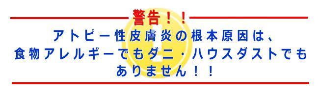 稲葉式アトピー改善プログラム 稲葉葉一 口コミ.jpg